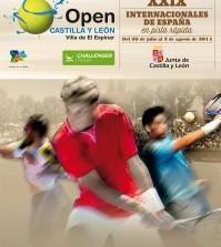 Cartel Torneo Espinar 2014