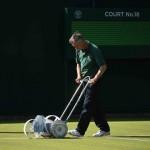 Cortando el césped en Wimbledon2