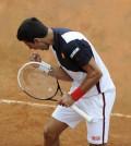 Internazionali BNL Italia 2014. Djokovic 3