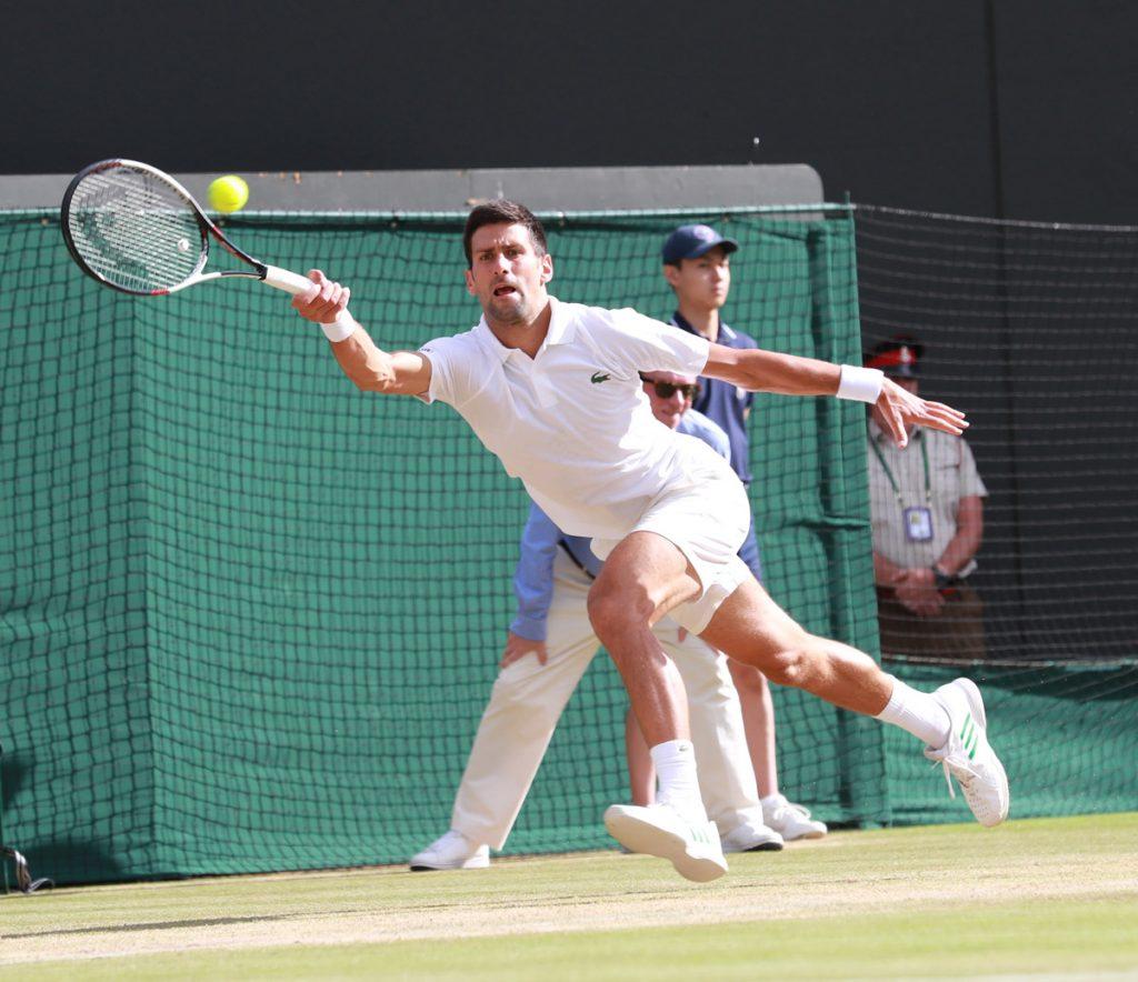 Djokovic N W 2017 14