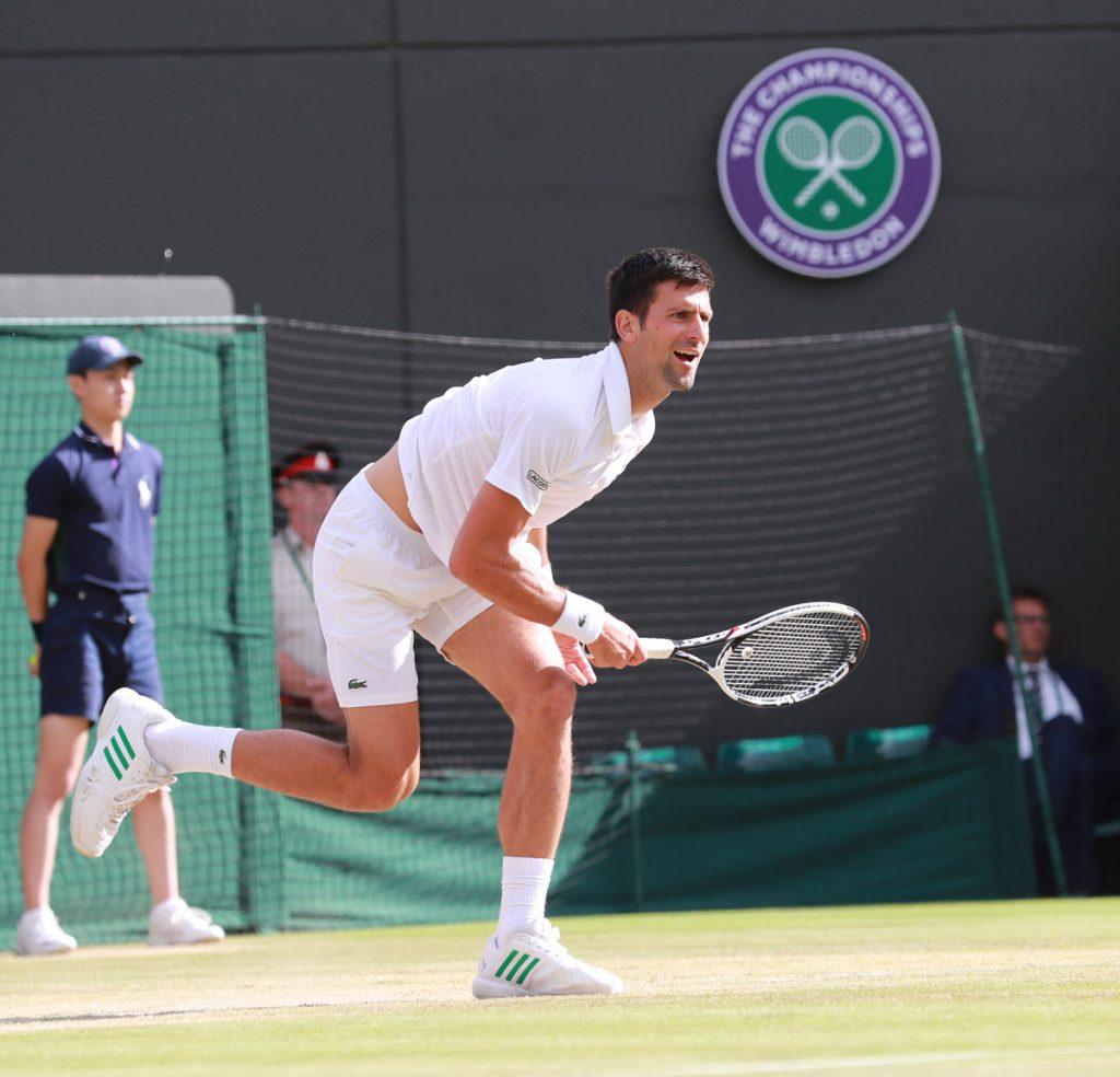 Djokovic N W 2017 15