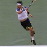 Ferrer D US Open 2013 40 b