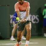 Nadal-R-I-Wells-2014-05-b.jpg