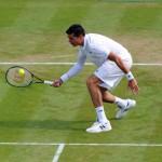 Wimbledon 2014 Raonic