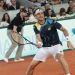 Ferrer Madrid2014-V