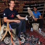 Murray Ferrer Doha 2014